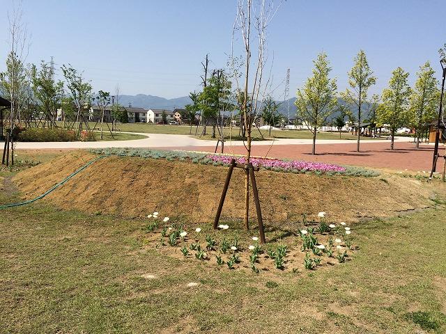 篠ノ井中央公園に行ってみた